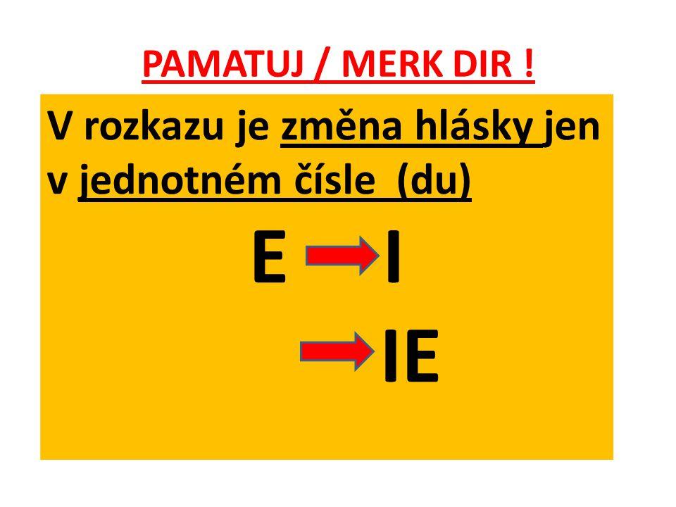 PAMATUJ / MERK DIR ! V rozkazu je změna hlásky jen v jednotném čísle (du) E I IE