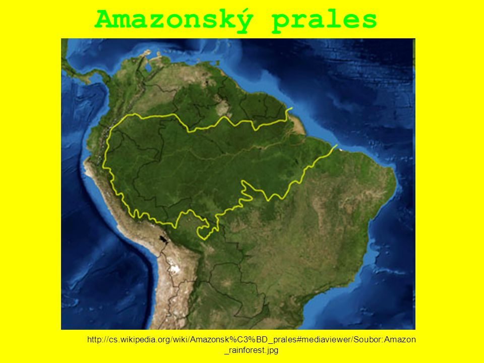 Amazonský prales http://cs.wikipedia.org/wiki/Amazonsk%C3%BD_prales#mediaviewer/Soubor:Amazon _rainforest.jpg
