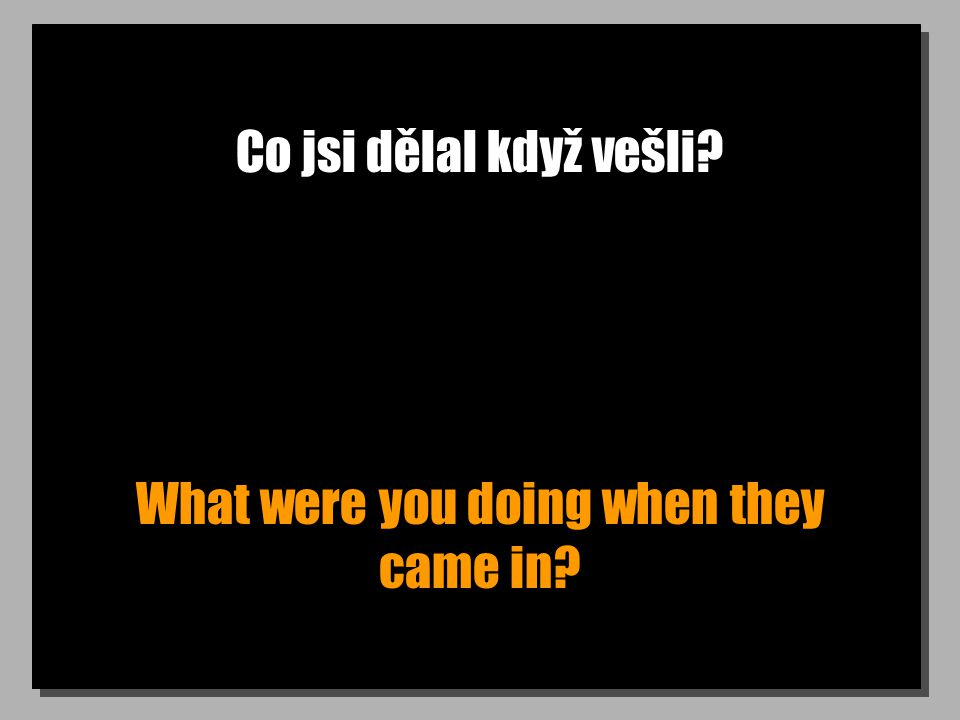 Co jsi dělal když vešli What were you doing when they came in