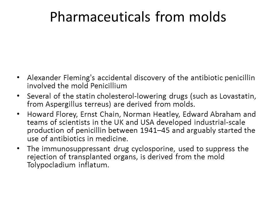 Pharmaceuticals from molds • Alexander Fleming s accidental discovery of the antibiotic penicillin involved the mold Penicillium • Several of the statin cholesterol-lowering drugs (such as Lovastatin, from Aspergillus terreus) are derived from molds.