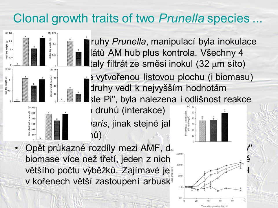 Clonal growth traits of two Prunella species...