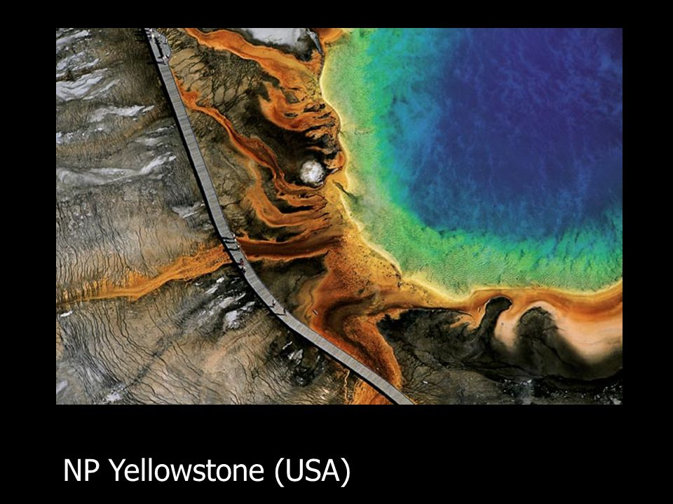 NP Yellowstone (USA)
