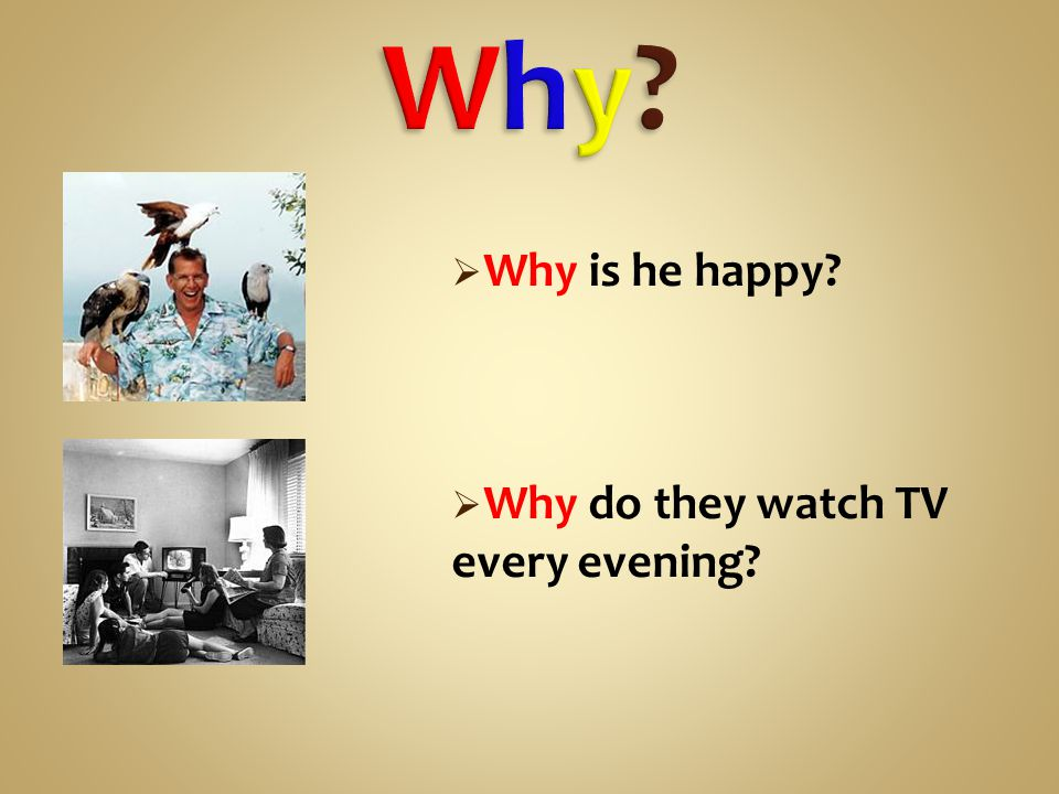  Why is he happy  Why do they watch TV every evening