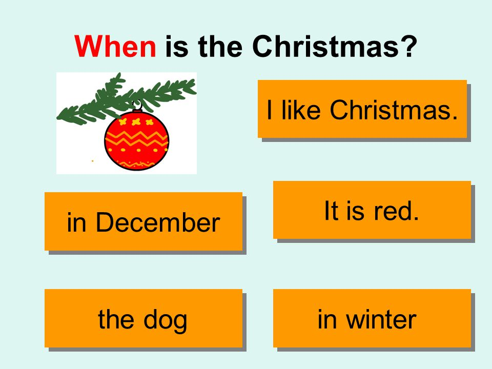 When is the Christmas It is red. the dog in December in winter I like Christmas.